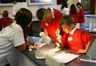 Science Festival Bolton School